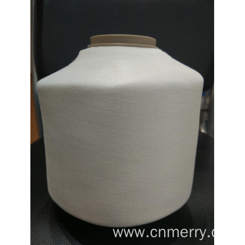 Polyester Embroidery Thread Raw White